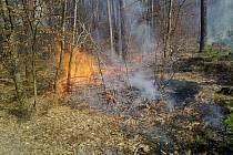 Požár lesa mezi Vrapicemi a Cvrčovicemi