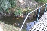 V Kačáku jsme našli pouze několik větších kaluží vody. V Čelechovicích již korytem potoka protékal menší potůček a z lodenického rybníku, i když byl naplněn až po okraj, neodtékalo skoro nic.