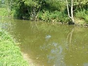 """Vodní plocha u Pcher je již týden vypuštěna. Dle tvrzení starosty obce byly majiteli odstraněny velké kusy odpadků ze dna """"rybníka"""" a v současnosti je znovu napouštěn."""
