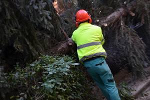 Vichřice na Kladensku, hasiči likvidovali spadané stromy.