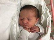 NELA ROUBALOVÁ, NELAHOZEVES. Narodila se 24. prosince 2018. Po porodu vážila 3,7 kg a měřila 52 cm. Rodiče jsou Kateřina Roubalová a Daniel Čonka. (porodnice Slaný)