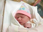 TEREZA KŘÍŽKOVÁ, LOUNY. Narodila se 3. ledna 2018. Po porodu vážila 3,30 kg a měřila 52 cm. Rodiče jsou Michaela a Ladislav Křížkovi. (porodnice Slaný)