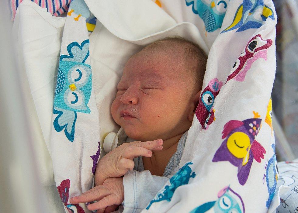 Daniel Arnošt Studený se narodil v nymburské porodnici 1. ledna 2021 v 17:46 hodin s váhou 3730 g a mírou 50 cm. Doma v Čelákovicích bude bydlet s maminkou Alenou, tatínkem Arnoštem a sestřičkami Adélou (9 let) a Michaelou (18 let).