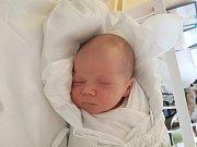 EDUARD HOŠEK, NOVÉ STRAŠECÍ. Narodil se 28. listopadu 2017. Po porodu vážil 3,79 kg a měřil 51 cm. Rodiče jsou Alena Hošková a Petr Hošek. (porodnice Kladno)