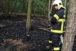 U Blevic hořelo asi sto metrů čtverečních lesa.