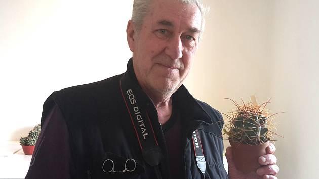 PŘEDSEDA SPOLKU kladenských kaktusářů Václav Stehlík se pěstování kaktusů i sukulentů věnuje už padesát let.