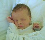 Lucinka Škarbanová, Družec. Narodila se 10. března 2017. Váha 3,36 kg, míra 48 cm. Rodiče jsou Veronika a Robert Škarbanovi (porodnice Kladno).