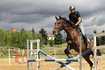 Jezdecký areál v Černuci svnějším kolbištěm, osvětlenou jízdárnou a halou nabízí kvalitní podmínky jak pro rekreační ježdění, tak i pro přípravu skokových a drezurních koní.