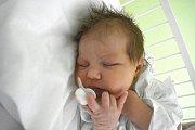 DOMINIKA SIRŮČKOVÁ, KLADNO. Narodila se 11. března 2018. Po porodu vážila 3,7 kg a měřila 52 cm. Rodiče jsou Kateřina Tothová a Martin Sirůček. (porodnice Kladno)