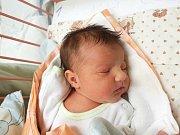 ELENA ŽALUDOVÁ, SLANÝ. Narodila se 18. prosince 2017. Po porodu vážila 3,07 kg a měřila 49 cm. Rodiče jsou Ivana a Pavel Žaludovi. (porodnice Slaný)