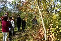 Den stromů a vycházka na Vinařickou horu.