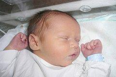 Martin Picek, Lány Vašírov. Narodil se 21. ledna 2016. Váha 4,40 kg, míra 52 cm. Rodiče jsou Lucie Zenáhlíková a Vlastimil Picek (porodnice Kladno).
