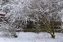 Březnový sníh zasypal i Tuchlovice.