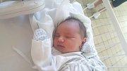 DAVID STARÝ, DOKSY. Narodil se 6. května 2018. Po porodu vážil 3,3 kg a měřil 50 cm. Rodiče jsou Pavla Stará a Lukáš Starý. Bráška Lukášek. (porodnice Kladno)
