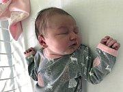 EMA ŠLÉGROVÁ, KLADNO. Narodila se 16. července 2019. Po porodu vážila 3,4 kg a měřila 49 cm. Rodiče jsou Pavlína Šlégrová a Jan Šlégr. Bráška Ondra. (porodnice Kladno)