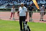 Celkem se závodů účastnilo 112 psů a psovodů.