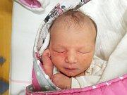 VICTORIE ŠŮLOVÁ, SLANÝ. Narodila se 19. ledna 2018. Po porodu vážila 3,13 kg a měřila 50 cm. Rodiče jsou Štěpánka Svobodová a Jan Šůla. (porodnice Slaný)