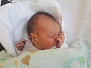 EMA FALCOVÁ, KLADNO. Narodila se 18. prosince 2018. Po porodu vážila 2,94 kg a měřila 47 cm. Rodiče jsou Monika Falcová a Ondřej Falc. (porodnice Kladno)