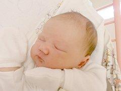 Veronika Micalová, Koštice (Louny). Narodila se 23. května 2015. Váha 4 kg, míra 50 cm. Rodiče jsou Linda Formánková a Petr Mical (porodnice Slaný).