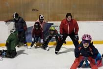 Děti učila bruslit česká hokejová legenda Martin Procházka.