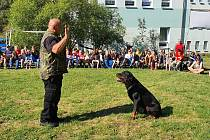 Kladenským strážníkům pomáhá nově v terénu psí kolega.