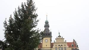 Kladenské náměstí Starosty Pavla již zdobí vánoční strom