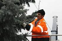 Zdobení vánočního stromu ve Slaném. Pracovník technických služeb Jaroslav Sirový