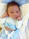 Václav Miltner, Svárov. Narodil se 3. listopadu. Váha 3,5 kg, výška 51 cm. Rodiče jsou Martina Rabochová a Libor Miltner. (porodnice Kladno)