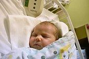 NIKOL VOŠTINKOVÁ, KLADNO. Narodila se 25. listopadu 2017. Po porodu vážila 3,46 kg a měřila 52 cm. Rodiče jsou Lenka Bartáková a Tomáš Voštinka. (porodnice Kladno)