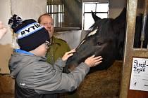 Z krmení koní a dalších zvířátek na Štědrý den na farmě Tvrz Libušín.
