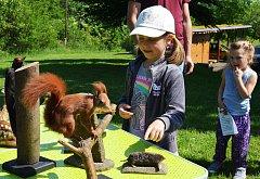 Den s myslivostí si užily děti na Čabárně, kde mohly vidět také ukázku sokolníka.