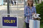 Volby do Evropského parlamentu v Tuchlovicích.