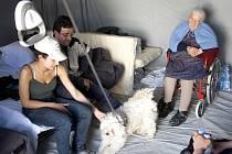 Dvakrát 50 000 korun poskytne město Kladno na pomoc italské oblasti postižené zemětřesením. Peníze jsou určeny na pomoc lidem provizorně žijícím ve stanech a na obnovu infrastruktury dvou tamních měst.