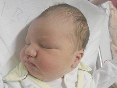 Sofie Iblová, Kralupy nad Vltavou. Narodila se 11. listopadu 2014. Váha 3,54 kg míra 51 cm. Rodiče jsou Petra Mončechová a Josef Ibl (porodnice Slaný).