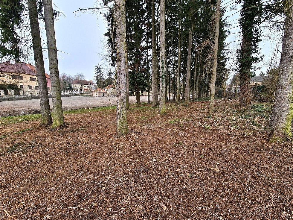 V parku Benar pracují, kromě specializované firmy, i zaměstnanci Technických služeb Slaný.