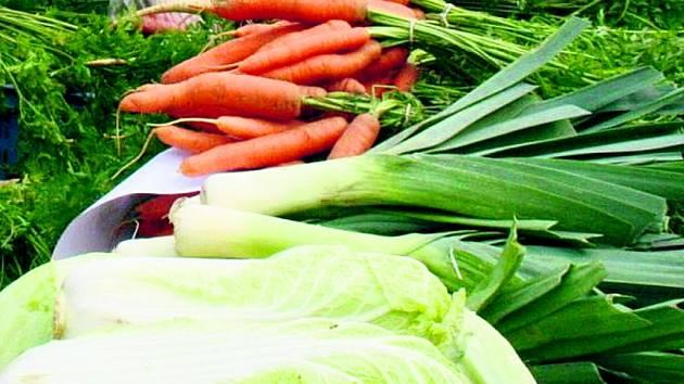 Slánská 1. základní škola na Hájích získala jako druhá v kraji pro svoji školní jídelnu certifikát Zdravá školní jídelna
