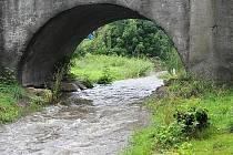 Když se zvýší hladina zaneseného Bakovského potoka v Sazené je to pro místní vždy alarmující. Starosta chce předejít prevencí nejhoršímu.