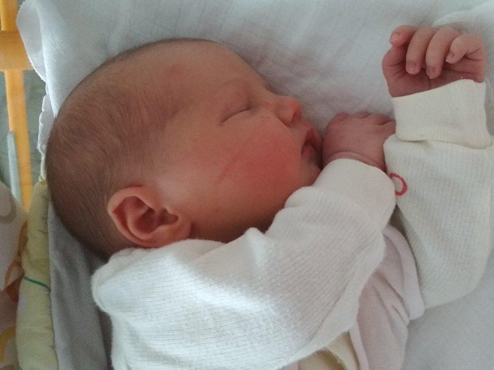 Janička Štěpničková, Mělník Narodila se 11. listopadu 2020. Po porodu vážila 3,28 kg a měřila 48 cm. Rodiče jsou Pepa a Hanička Štěpničkovi, sestra Lenička. (porodnice Mělník)