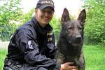 Policejní pes Morgan.