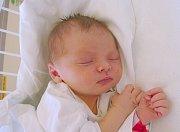Taisya Barabášová, Hostivice. Narodila se 14. března 2017. Váha 3,35 kg, míra 50 cm. Rodiče jsou Anastasia a Roman Barabášovi (porodnice Kladno).