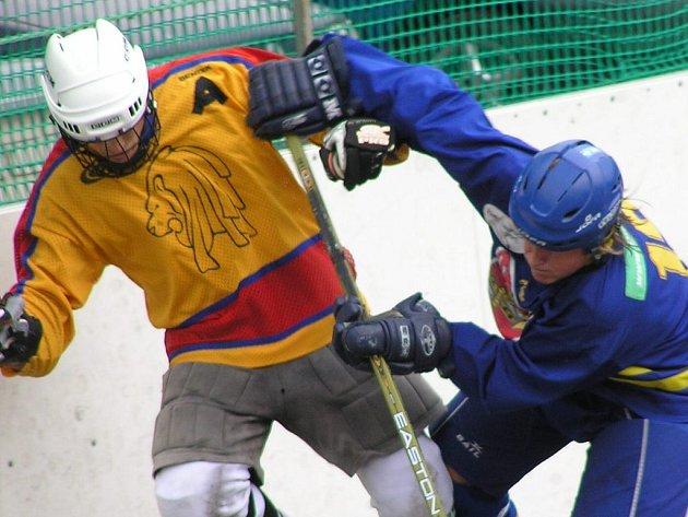 Michal Vašek (vlevo) patří tradičně k oporám Jungle Fever. Jeho tým vede ve finále II. národní ligy-střed nad Novým Strašecím 2:0 na zápasy.
