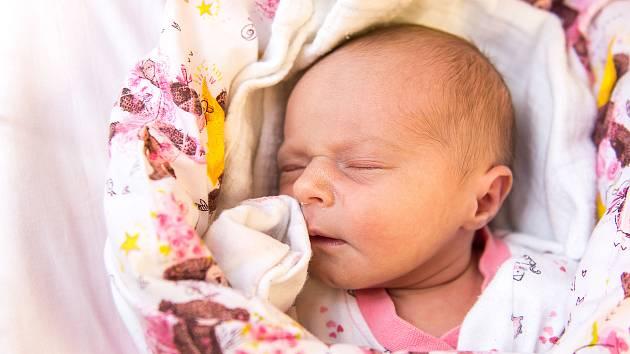 Helena Pláničková se narodila v nymburské porodnici 31. prosince 2020 v 9:35 hodin s váhou 3040 g a mírou 48 cm. V Jičíně bude prvorozená holčička vyrůstat s maminkou Olgou a tatínkem Tomášem.