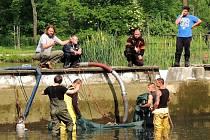 DESÍTKY dobrovolníků pomáhají při čištění Malovarského rybníku ve Velvarech. Cílem je z jeho menší nádrže vytvořit opět vhodné místo ke koupání.