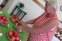 Nejkrásnější jablko Kladenska