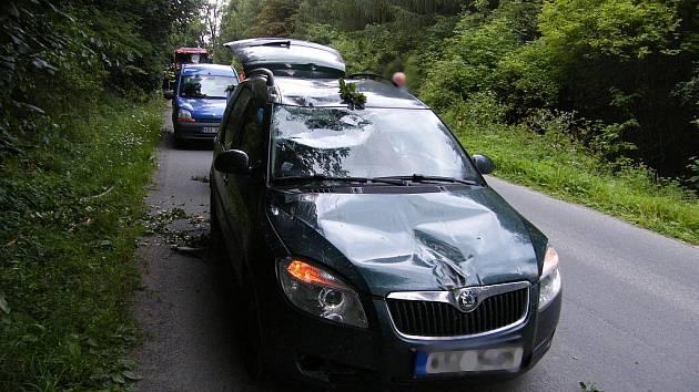 V pátek večer spadla na projíždějící automobil mohutná větev. Jako zázrakem se nikomu nic nestalo.