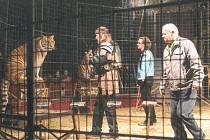 Čužák Lubomír Rys (vpravo) není ve své kůži, tygr není v nejlepší náladě. Jaromír Joo ale všechno zvládl.