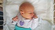 TOMÁŠ BUŠTA, KLADNO. Narodil se 26. října 2018. Po porodu vážil 3,27 kg a měřil 50 cm. Rodiče jsou Michaela Buštová a Tomáš Bušta. Sestřička Barborka. (porodnice Kladno)