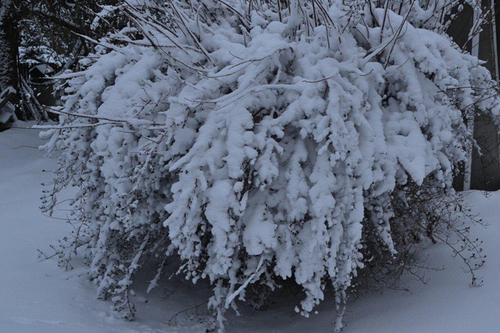 Únorový sníh na kladenském venkově.