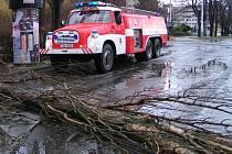 Vichřice povalila starý strom těsně před železničním přejezdem v ulici Fr. Kroze v Kladně.
