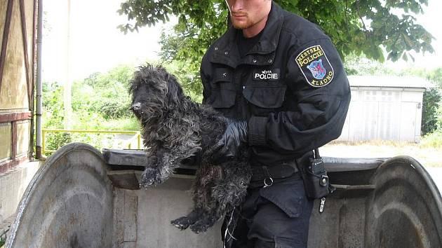 Kladenští strážníci ve středu pomohli při záchraně dalšího psa.